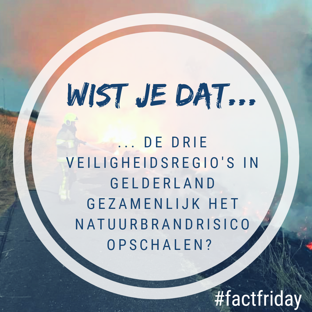 factfriday 17 mei.png
